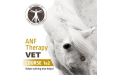 ANF Vet - GOLD Coast - AU - 30th Aug - 1st Sept 2019